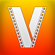 VieMade Video Downloader Reference by Donjonjon