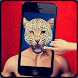 Animal Face Swap Editor by okofixlab