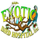 Exotic Bird Hospital by Appiyus
