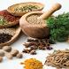 Siddha Medicine Glossary Tamil by Rathika