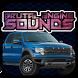 Engine sounds of Raptor SVT