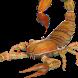 VR Scorpion by Trendyworks LLC
