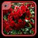 Rose Garden Flowers Design by Black Arachnia