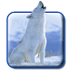 White Snow Wolf Live Wallpaper by live wallpaper collection