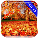 Early Autumn Walk Live Wallpap by Studio Tapeta Apps