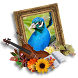Peacock Photo Frames by Apps24 Studio