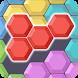 Block Hexa Puzzle by Digital Frog