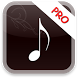 Mp3 Player Pro by Hm Inc