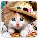 Cat Live Wallpaper by Best Live Wallpapers Free