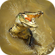 Crocodile Attack Simulator by Iconic Click