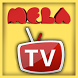 MELA TV by MELA Productions Nebyou Teklu