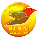 Rádio Melodia 87,9 FM by IARTH