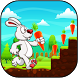 Bunny Run by STEM Studios