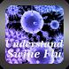 Understand Swine Flu by Ulfah