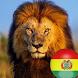 León Imperial de Bolivia by FutbolApps by AMAwords.com