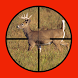 Whitetail Buck Hunter Crossing by New and Addictive Top Free Adventure Games