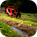 Insects & Organic Gardening by Bio-Logical