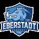 TG 07 Eberstadt Handball by Andreas Gigli