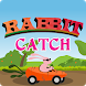 Rabbit catch by funny games