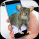 Mouse on Screen Prank – Funny Joke