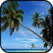 Top Maldives Island Wallpapers by aifzcc.studio