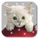 Xmas Cat Live Wallpaper by KKPICTURE