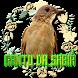 Sabiá laranjeira canto clássic by Raja Burung App