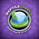 Reptile Express by Sam Fard
