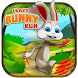 Bunny Runner Carrot Adventure by HawksGames