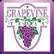 My Grapevine by Municipal Media Inc.