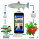 Aquaponics Guide Aquaculture by Appeo.es