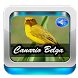 Canto De Canario Belga by Ganiarto Media Digital