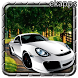 Racing Car Simulator by ekapps