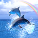 Rainbow Ocean by DMF, Inc.