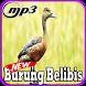 Kicau Burung Belibis Top Gacor Mp3 by Indo Barokah94