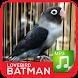 Masteran Kicau Lovebird Mp3 by Majujayadut