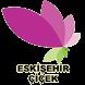 Eskişehir Çiçek Gönder by Eskişehir Reklam İnternet ve Yayıncılık Hizmetleri
