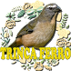 Canto para esquentar o trinca ferro by Raja Burung App