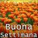 Buona Settimana by Black house
