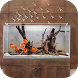 Aquarium Design by Amunisi