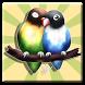 Lovebird Chirp by Apta Studio