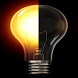 Torch Light Bulb by KARP Studios