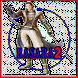New Game Basara 2 Hint by kawazakioke