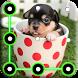 Puppy Dog Pattern Lock Screen by arrowshapes