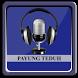 Lagu PAYUNG TEDUH & Lirik by Buloger