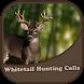 Whitetail Deer Calls by SantaZanta