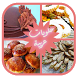 Moroccan Cake Recipes 2017 by Dev0wyl