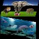 Animal Football by AdeSoftware