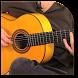 Flamenco Guitar by Expert Dance & Entertainment Studio