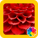 Red Wallpapers by GOBO
